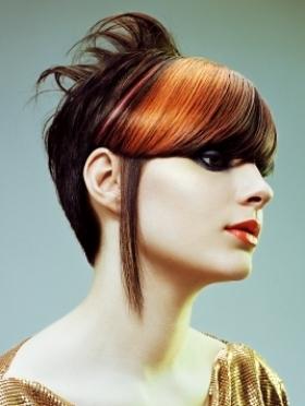 Виды омбре на темные волосы